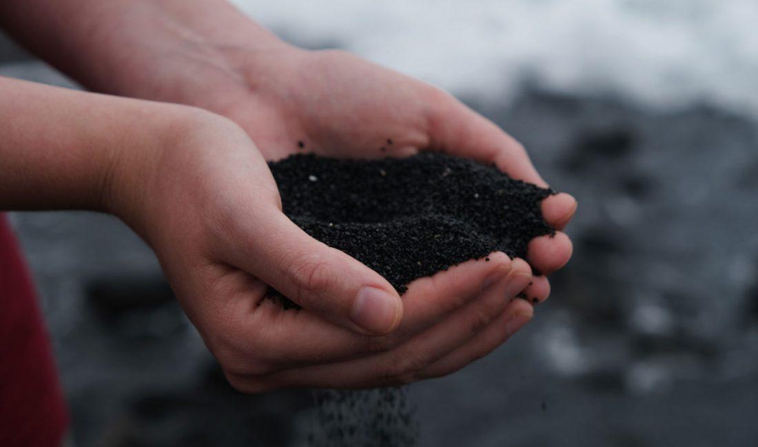 Hände mit Kompost